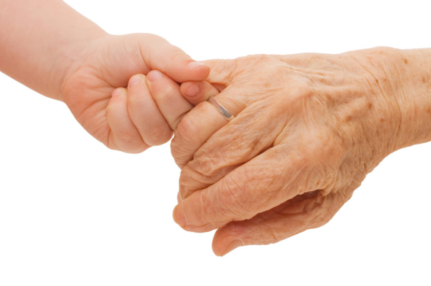 document family history Toddler holding great grandmas hand
